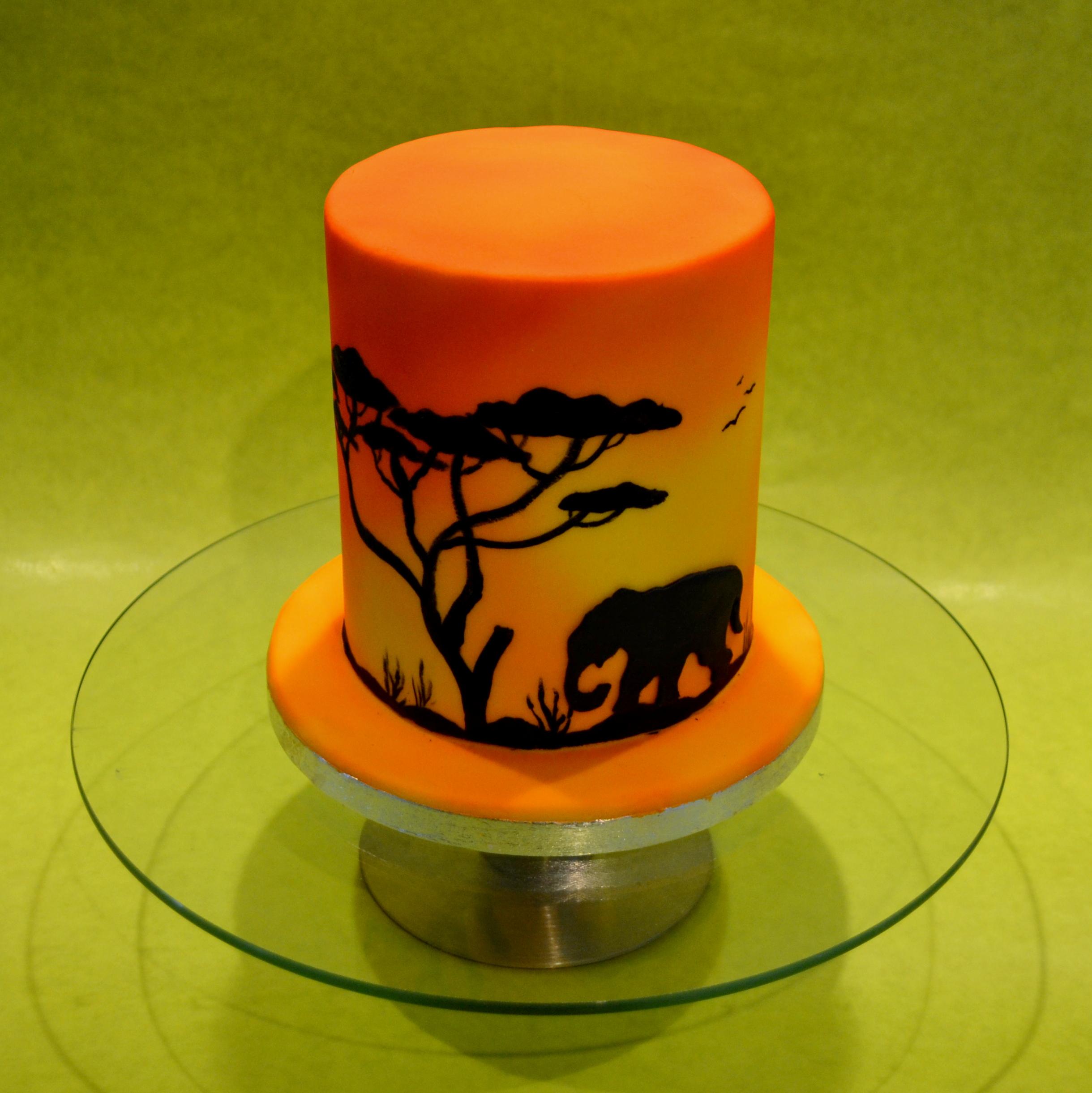 airbrush taart airbrush afrika taart   dubbelhandig airbrush taart