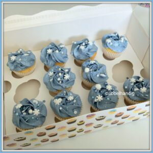 mini cupcakes bij frozen2